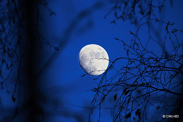 It's that time of the month again - Full moon on St Valentine's Day