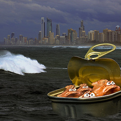 Australian surfing....( on Explore )
