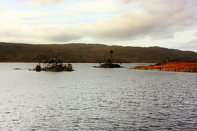 Loch Assynt - Small Islands