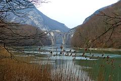 P1090076- Le Rhône et le pont de chemin de fer - Rando Fort l'Ecluse:Léaz  11 mars 2014