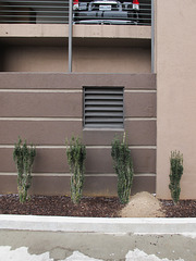 Plantings idea for a parking garage.