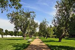 Chateau Ctěnice - Park