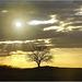 Sacka Sunset (2)