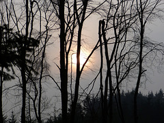 Brumes matinales du 15 mars.. [ON EXPLORE]