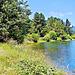 Lake Atiamuri