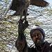 Falkner aus Bronze