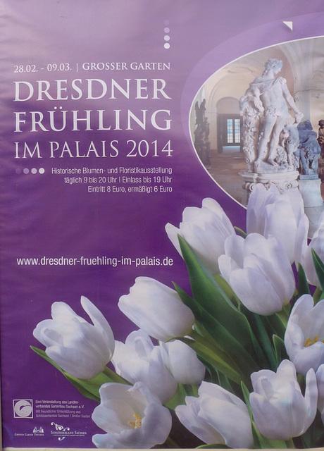 Dresdner Frühling im Palais - 2014