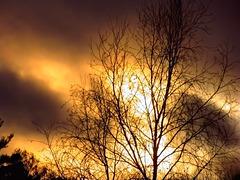 Lueur du soleil couchant….