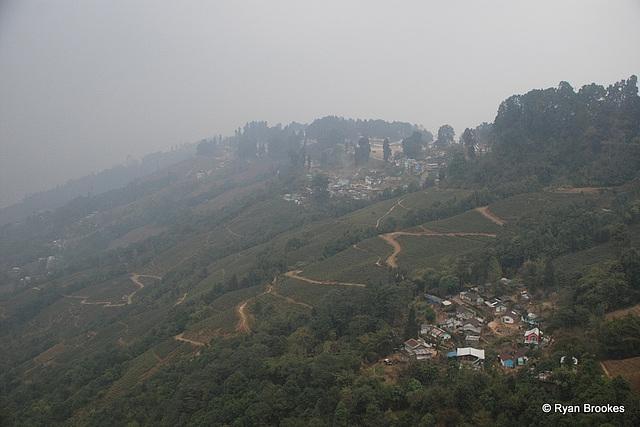 20100131-0047