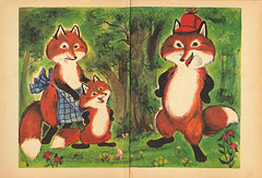 Little Fox - Endpapers