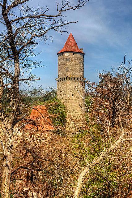 Zvíkov Castle 10