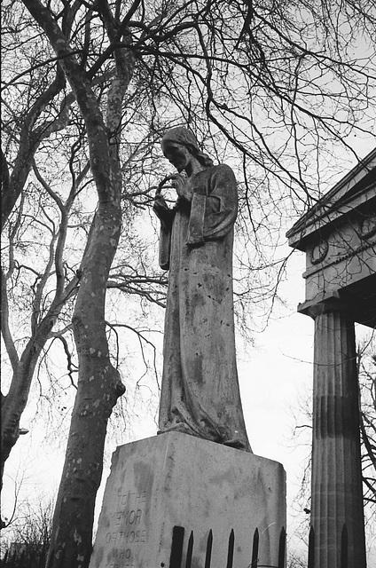 Crown of Thorns, Peckham.