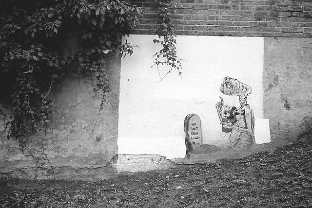 Graffitti, Surrey Canal path, Peckham.