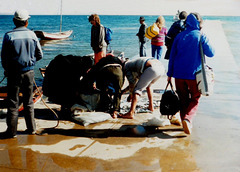 02 Juli: Fishermen Sorting Their Catch