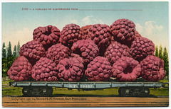 A Carload of Raspberries
