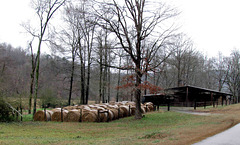 Hay Bales and Barn