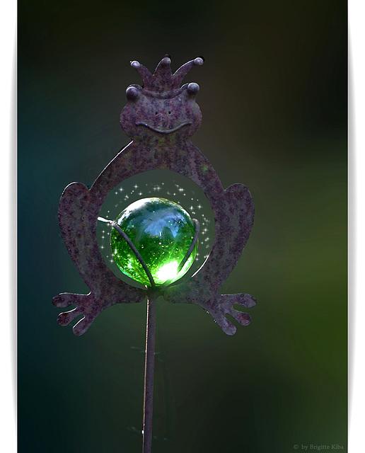 Mein Frosch'n