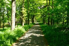 The park of Oud Woestduin