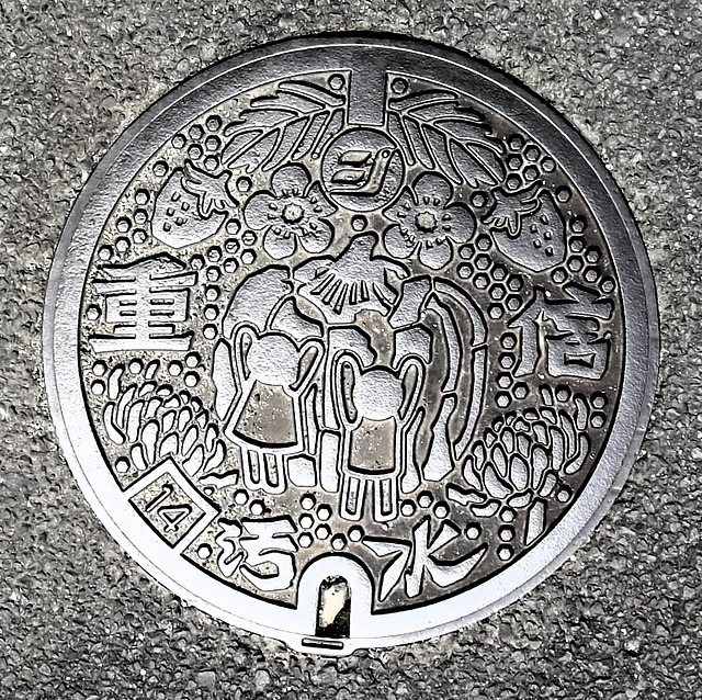 Toon Town Manhole
