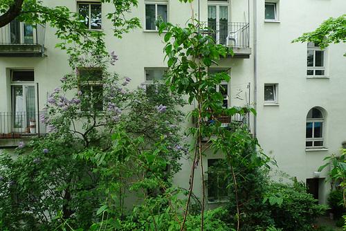 hinterhof-1180694