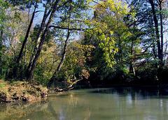 Fisher Creek at Big Wills Creek