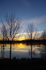Balade sur les bords de Saône