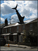 shark attack on terraced house