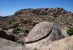 Crown Prince Lookout - Live Oak Canyon Loop (5918)