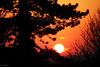 Patio Sunset