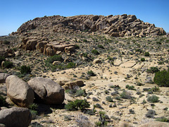 Crown Prince Lookout - Live Oak Canyon Loop (5920)