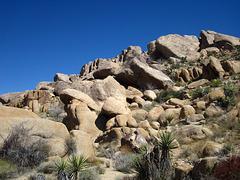 Crown Prince Lookout - Live Oak Canyon Loop (5927)