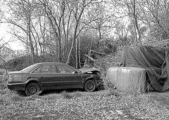 Ex-Audi
