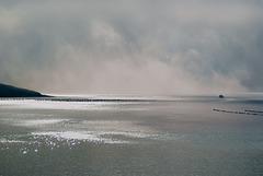 Foggy morning, Shetland