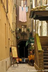 Volterra - 052614-002