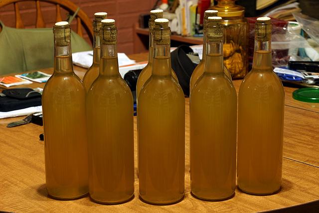 Dandelion Wine, Mk. I