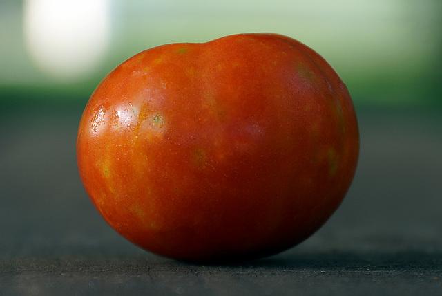 Tomato No. 3