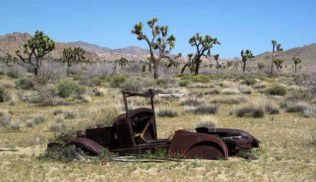 Samuelson's Vehicle (5848)