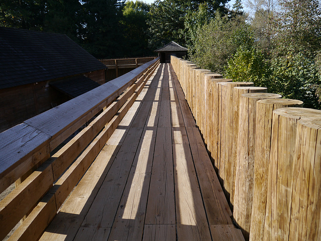 Fort Langley Palisade