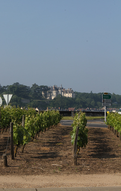 Vigne du rond-point devant le pont sur la loire entre Onzain et Chaumont- vue sur Château de Chaumont sur Loire de l'autre côté de la Loire