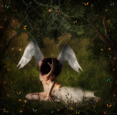 L'ange déchu...