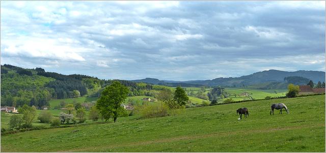 Quiétude. Ma campagne en Saône et Loire.
