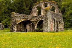 Waverley Abbey ruins 2014