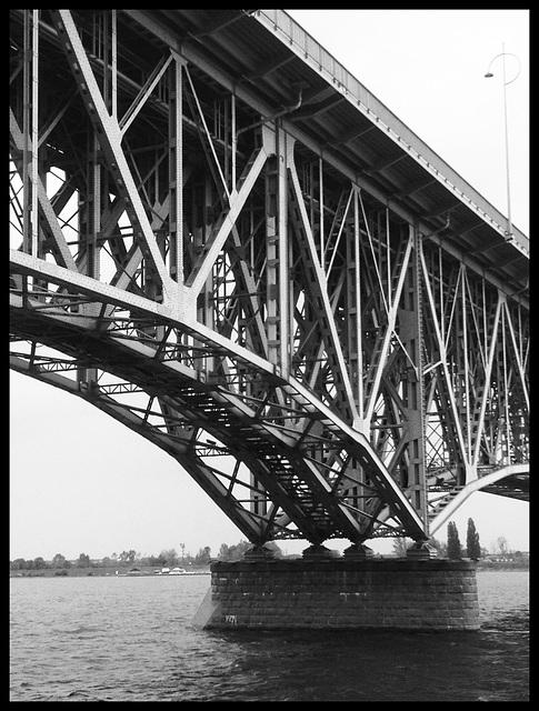 Under the bridge_01