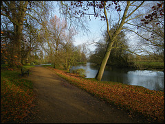 November by the Cherwell