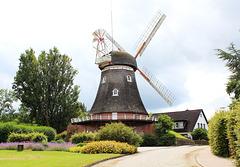 Windmühle in Bederkesa