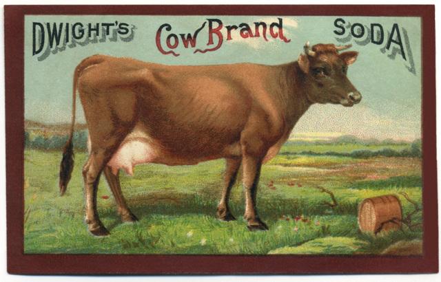 Dwight's Cow Brand Soda