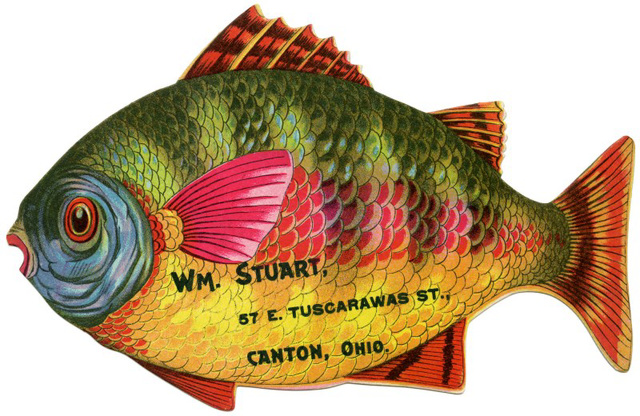 Fishing for Your Business, William Stuart, Canton, Ohio