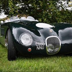 Jaguar C-Type - C990 NNU - Details Unknown
