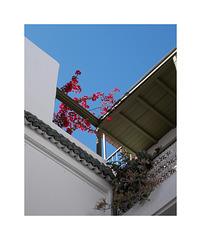 Ciel bleu  à Marrakech