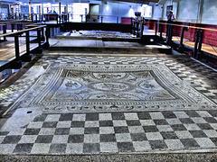 Fishbourne Roman Villa - The Dolphin Mosaic floor at Fishbourne